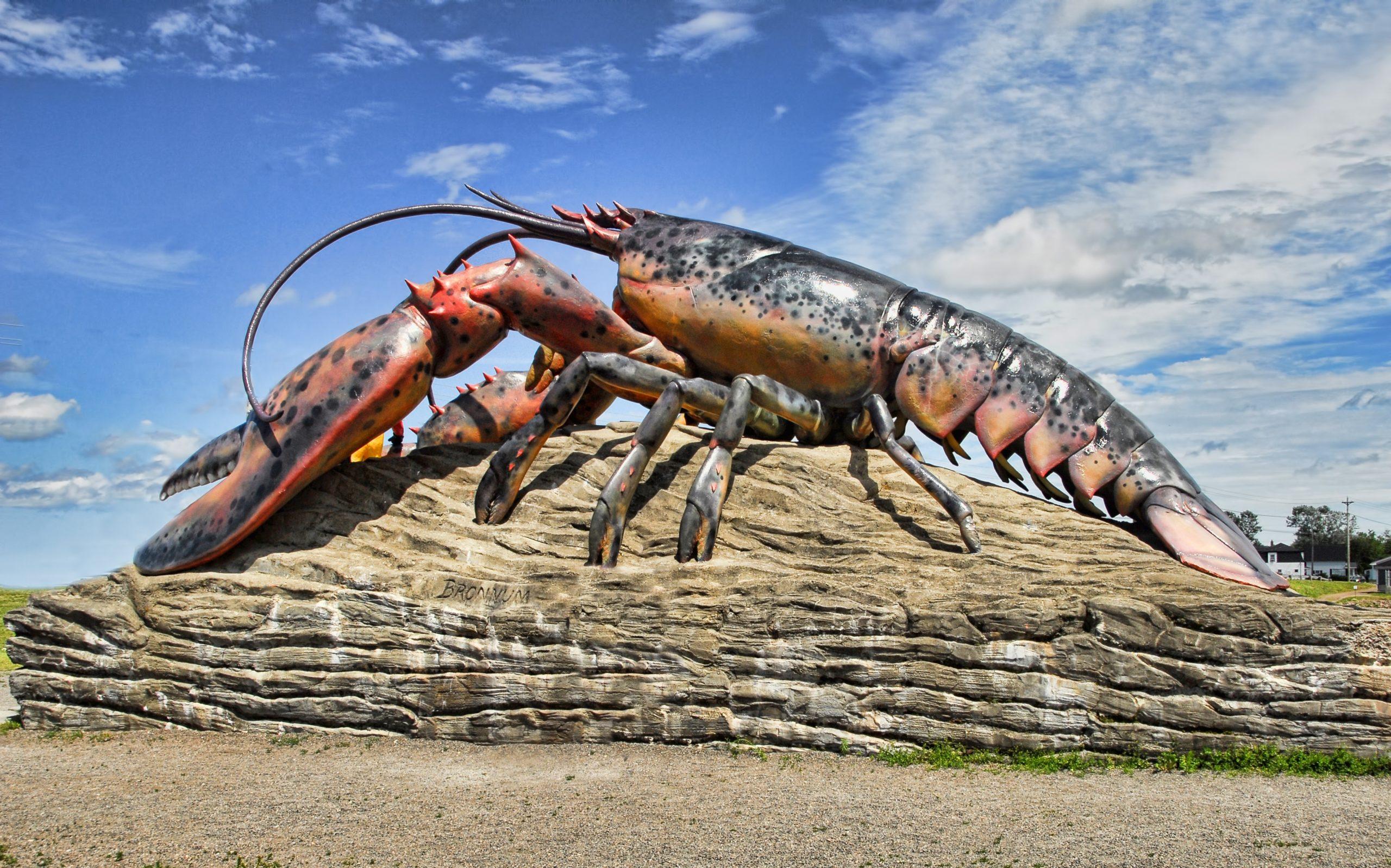 Canada Plaza - Giới thiệu tỉnh bang New Brunswick-lobster-icon