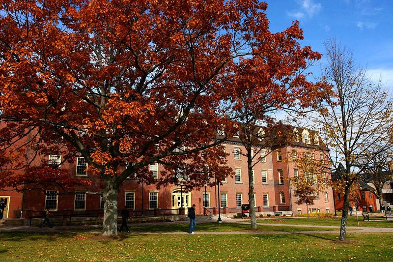 Giáo dục - đại học Prince Edward Island 1