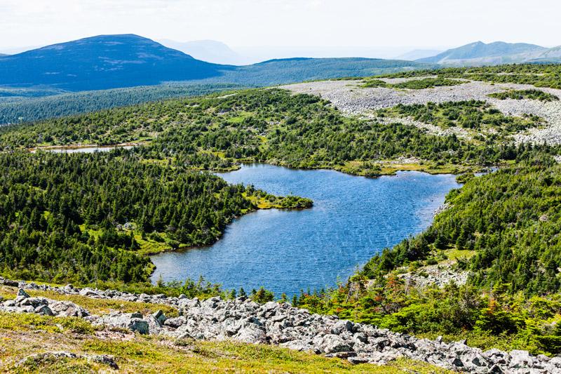 Quebec-dia-ly-2