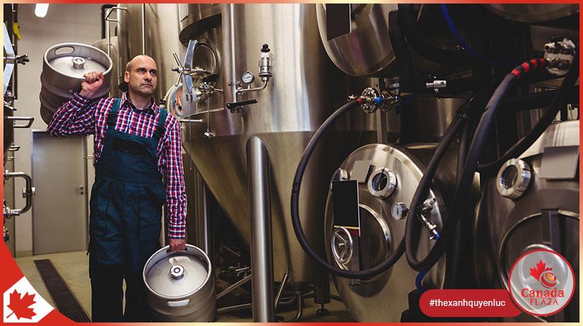 [VIỆC LÀM CANADA] Công nhân - Nhà máy bia (Worker - Beer Factory)