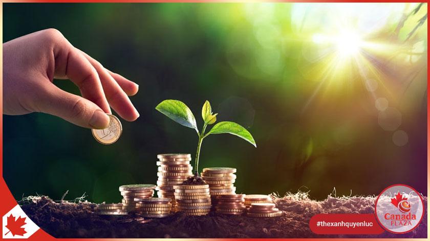 Đầu tư TFSA: 5 lưu ý cho người mới nhập cư Canada