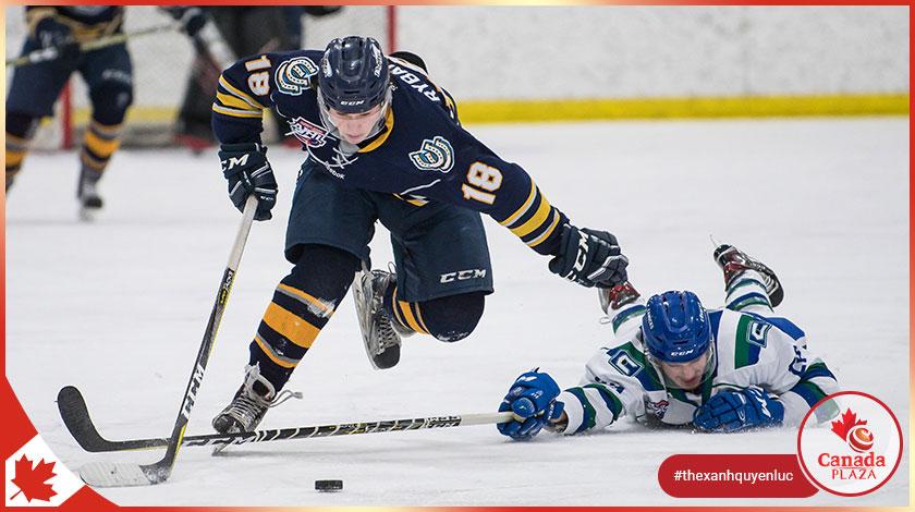 Thể thao và hoạt động ngoài trời Calgary
