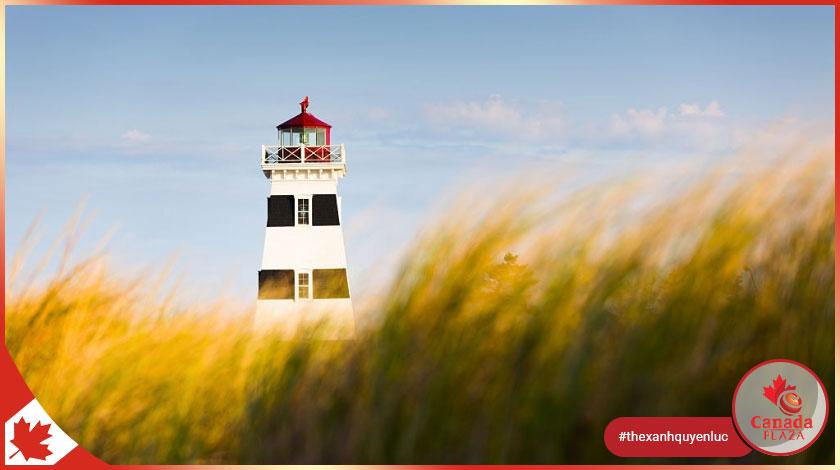 Chương trình đề cử tỉnh bang Prince Edward Island (PEI PNP) công bố kết quả ngày 17122020 2