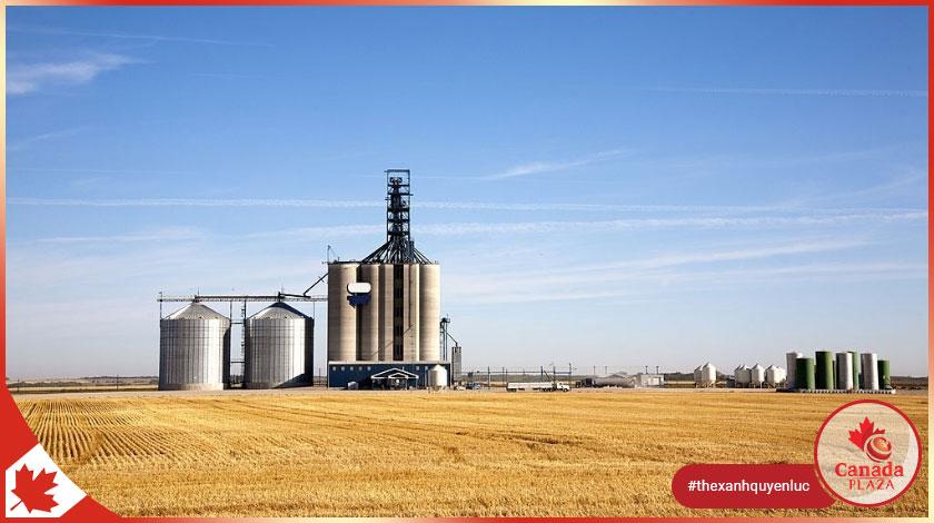 Chương trình thí điểm nhập cư lĩnh vực nông nghiệp thực phẩm (AFIP) 2