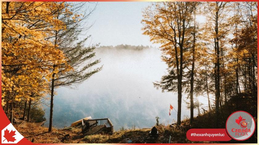 Định cư Canada 2021 Những điểm nổi bật 1