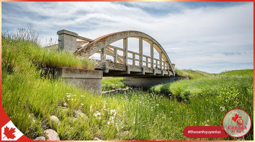 Chương trình đề cử tỉnh bang Saskatchewan (SINP) công bố kết quả ngày 712021 1