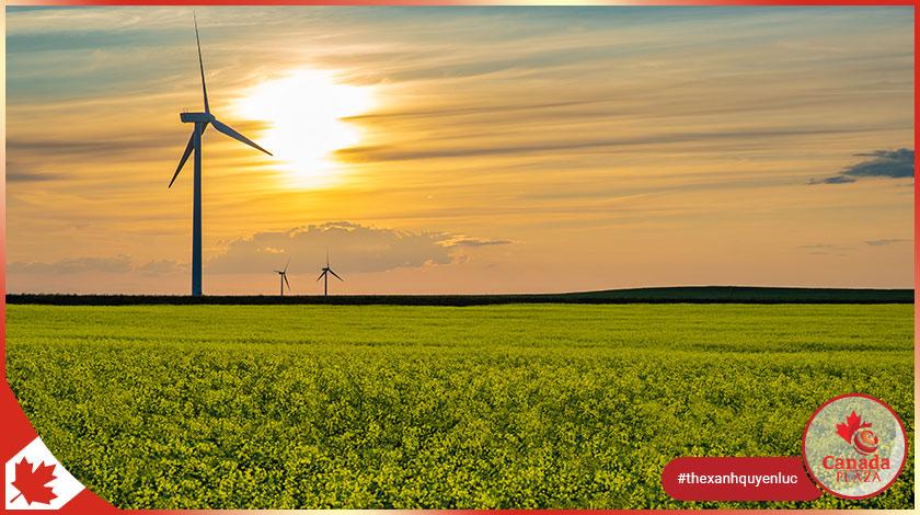 Chương trình đề cử tỉnh bang Saskatchewan (SINP) công bố kết quả ngày 712021 2