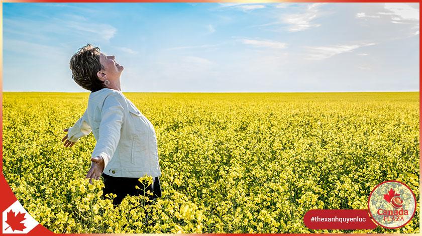 Chương trình đề cử tỉnh bang Saskatchewan (SINP) công bố kết quả ngày 712021