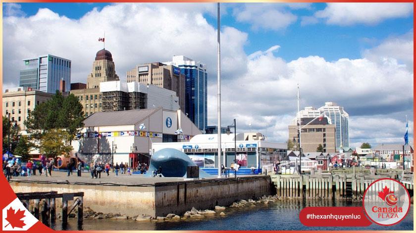 Nova Scotia tăng mức nhập cư để tạo tiền đề cho việc phục hồi kinh tế 1