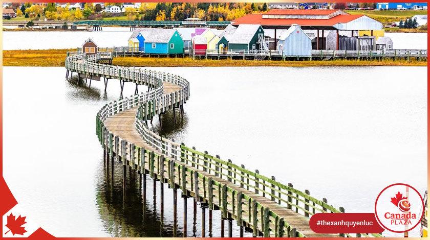Chương trình đề cử tỉnh bang New Brunswick tạm thời chấp nhận đơn đăng ký 1