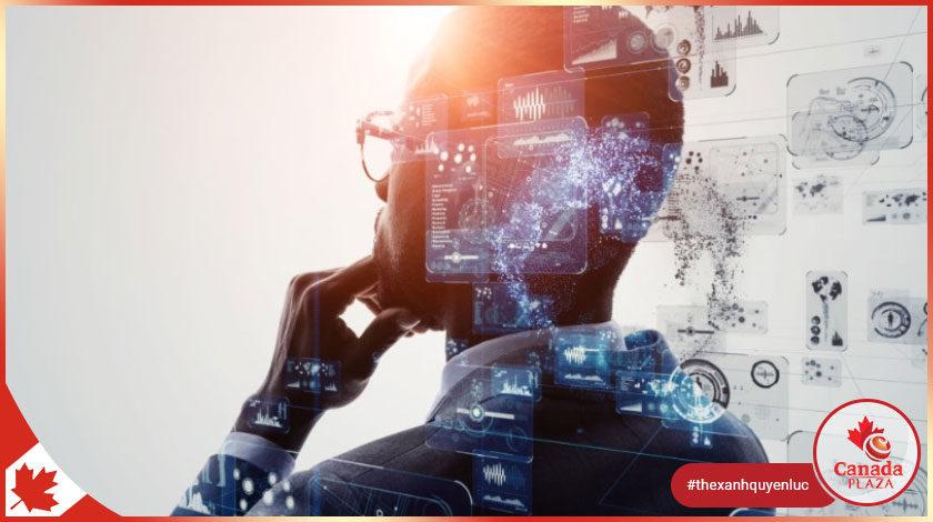 Nhập cư Canada ngành công nghệ Express Entry, PNP và giấy phép làm việc