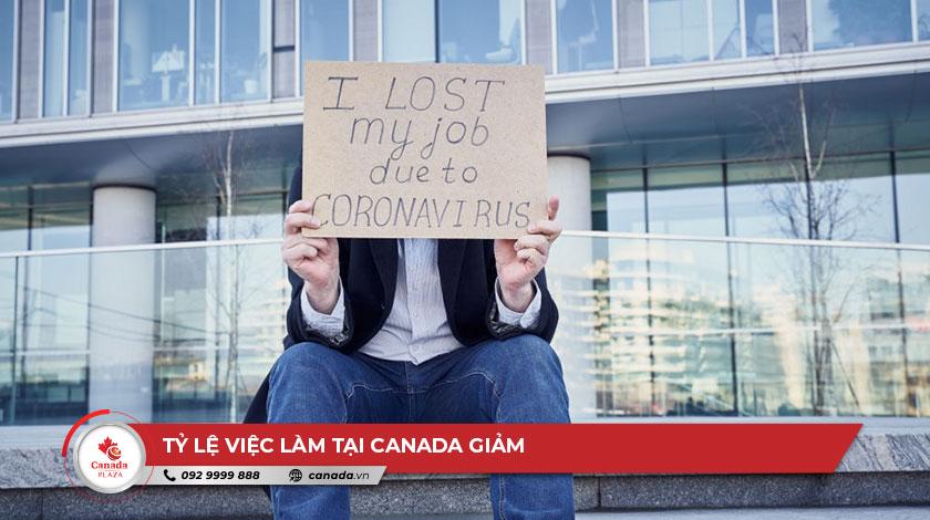 Tỷ lệ việc làm tại Canada giảm