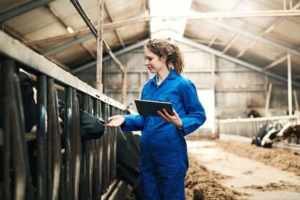 Công nhân trang trại