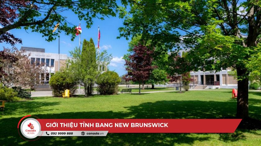 Giới thiệu tỉnh bang New Brunswick 2