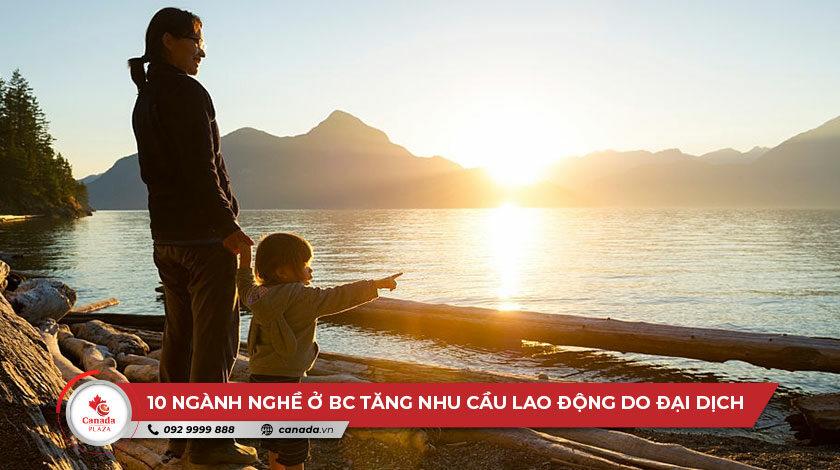 10 ngành nghề ở British Columbia tăng nhu cầu lao động do đại dịch
