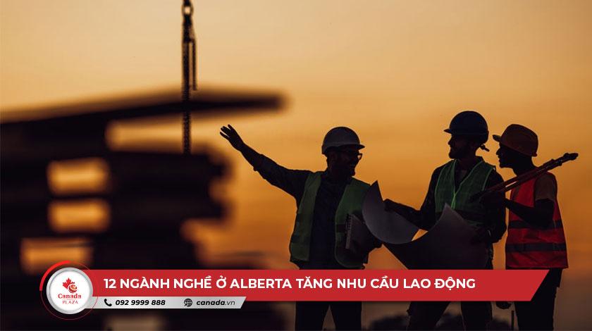 12 ngành nghề ở Alberta tăng nhu cầu lao động do đại dịch