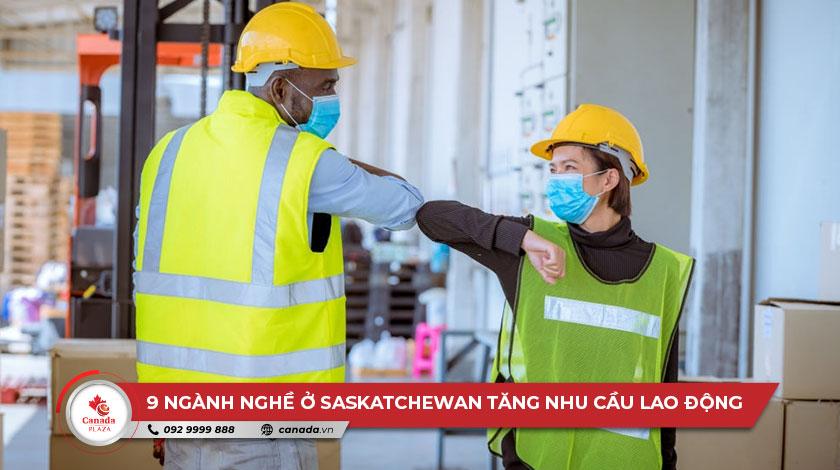 9 ngành nghề ở Saskatchewan tăng nhu cầu lao động do đại dịch