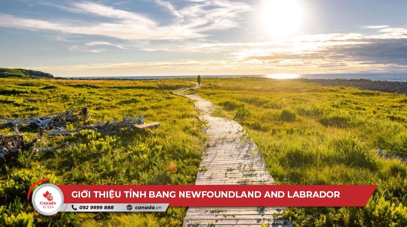 Giới thiệu tỉnh bang Newfoundland and Labrador 2