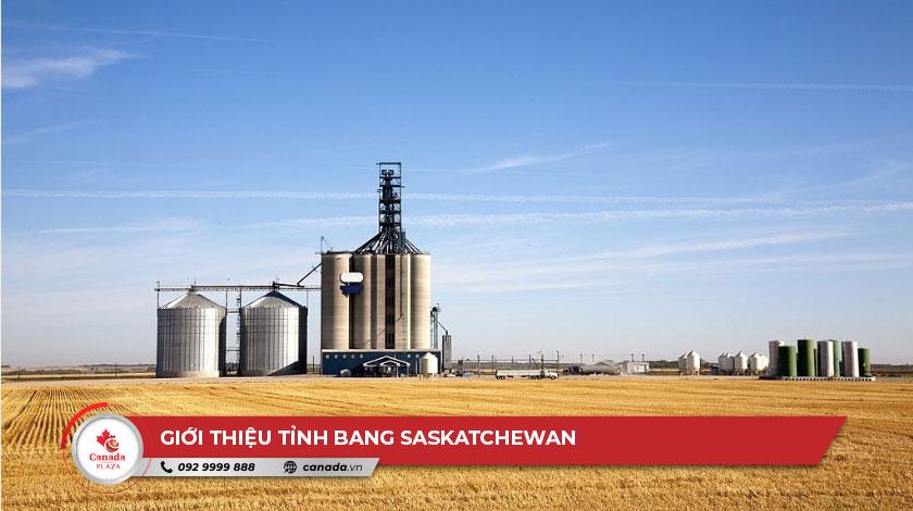 Giới thiệu tỉnh bang Saskatchewan 2